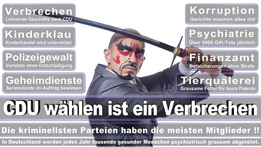 Landtagswahl-Mecklenburg-Vorpommern 2016 (34)