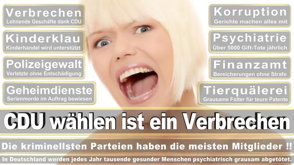 Landtagswahl-Mecklenburg-Vorpommern 2016 (343)