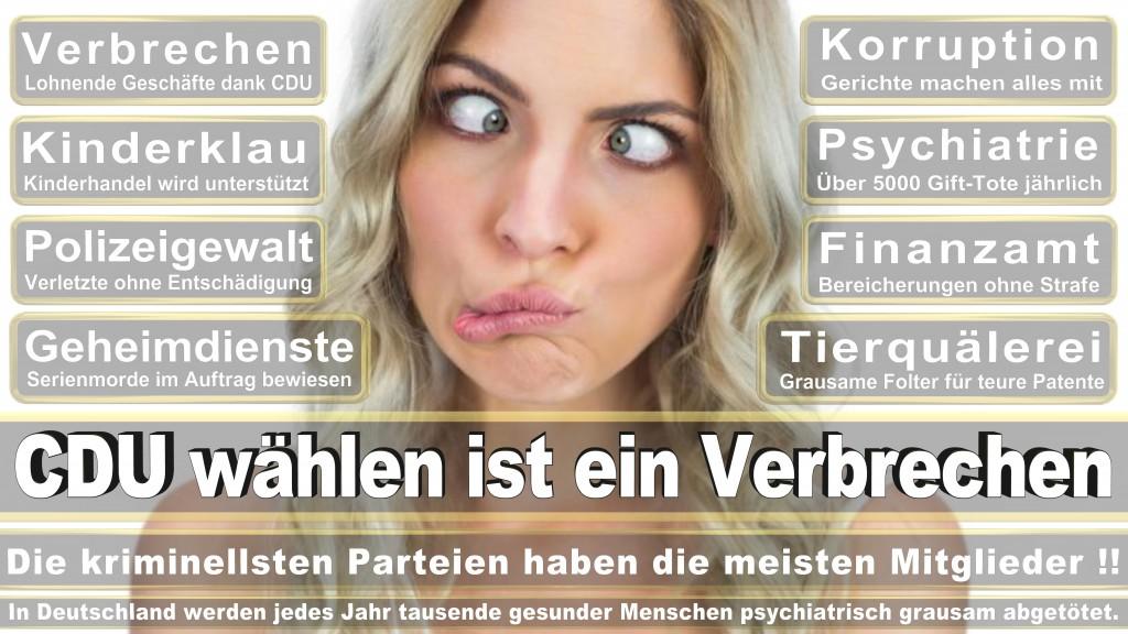 Landtagswahl-Mecklenburg-Vorpommern 2016 (344)