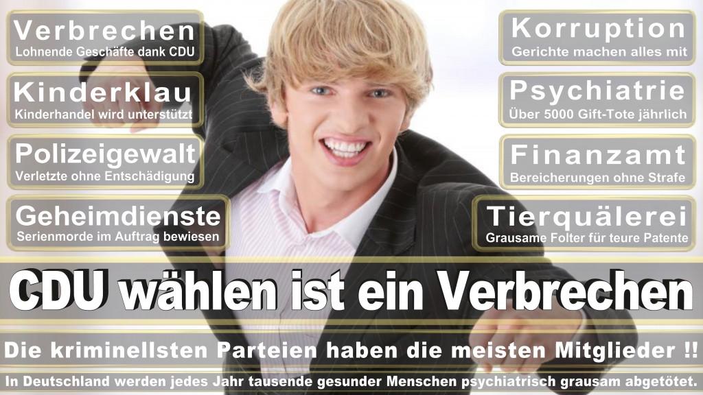 Landtagswahl-Mecklenburg-Vorpommern 2016 (345)