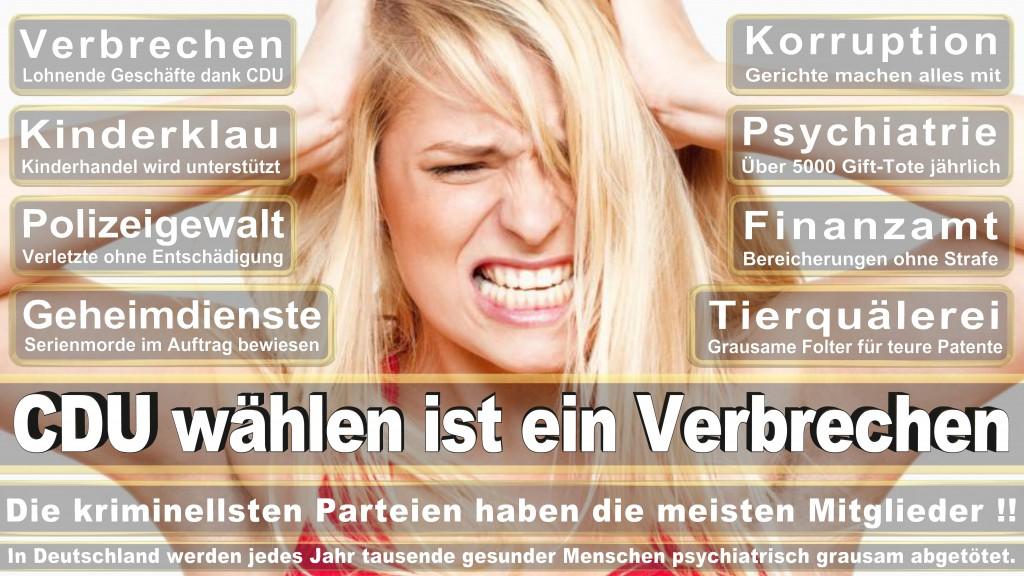 Landtagswahl-Mecklenburg-Vorpommern 2016 (346)