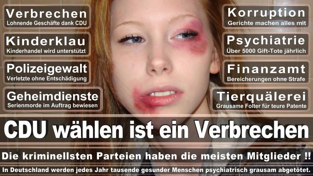 Landtagswahl-Mecklenburg-Vorpommern 2016 (35)