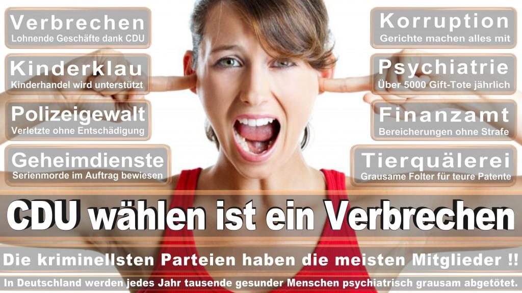 Landtagswahl-Mecklenburg-Vorpommern 2016 (356)