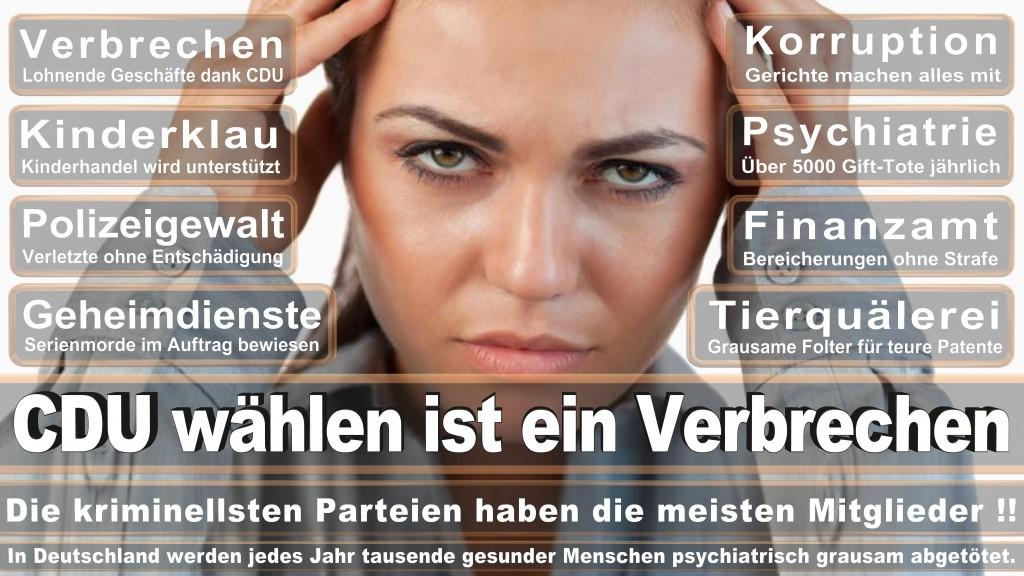 Landtagswahl-Mecklenburg-Vorpommern 2016 (358)