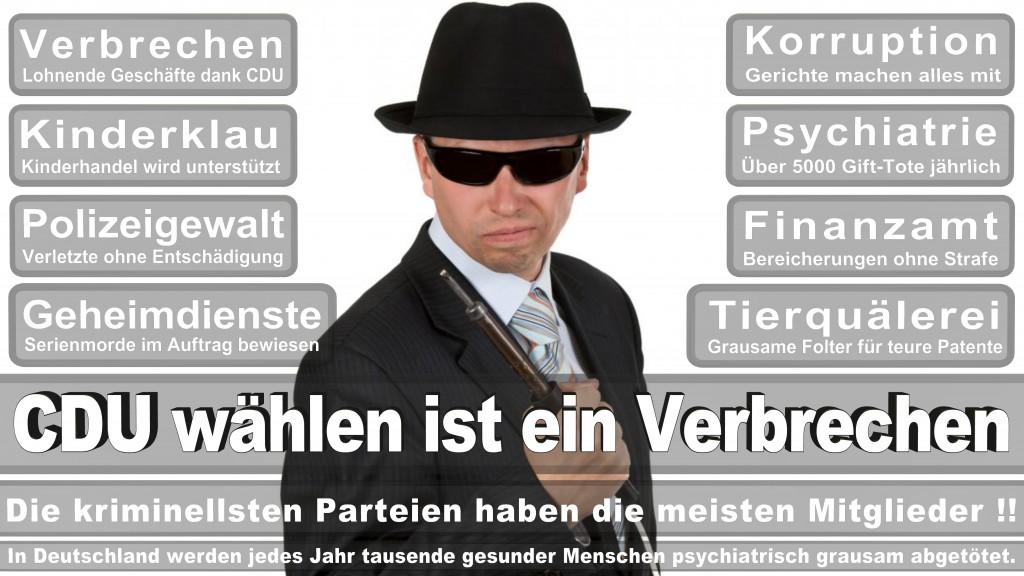 Landtagswahl-Mecklenburg-Vorpommern 2016 (366)