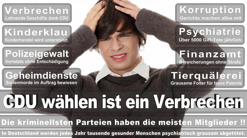 Landtagswahl-Mecklenburg-Vorpommern 2016 (367)