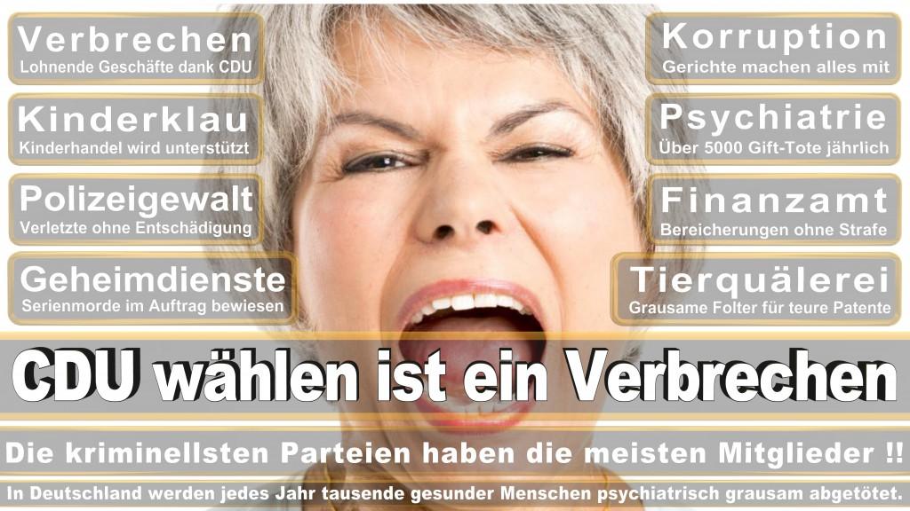 Landtagswahl-Mecklenburg-Vorpommern 2016 (368)