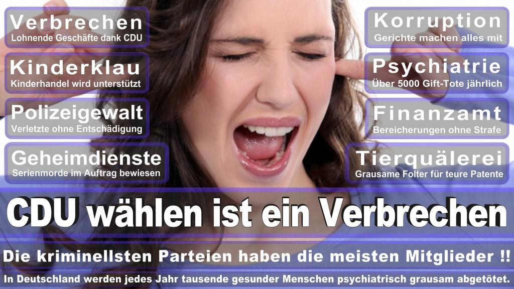 Landtagswahl-Mecklenburg-Vorpommern 2016 (369)