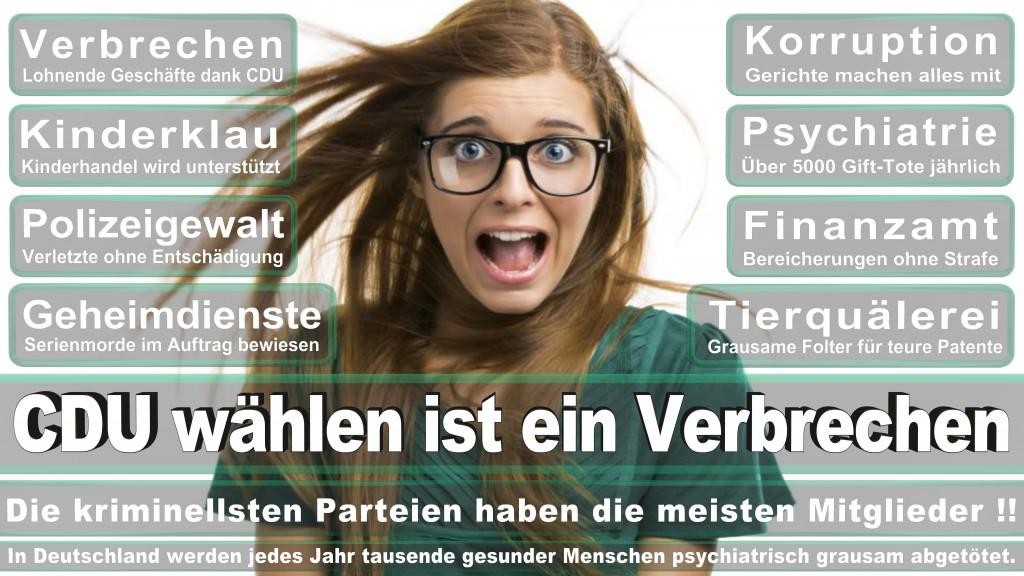 Landtagswahl-Mecklenburg-Vorpommern 2016 (378)
