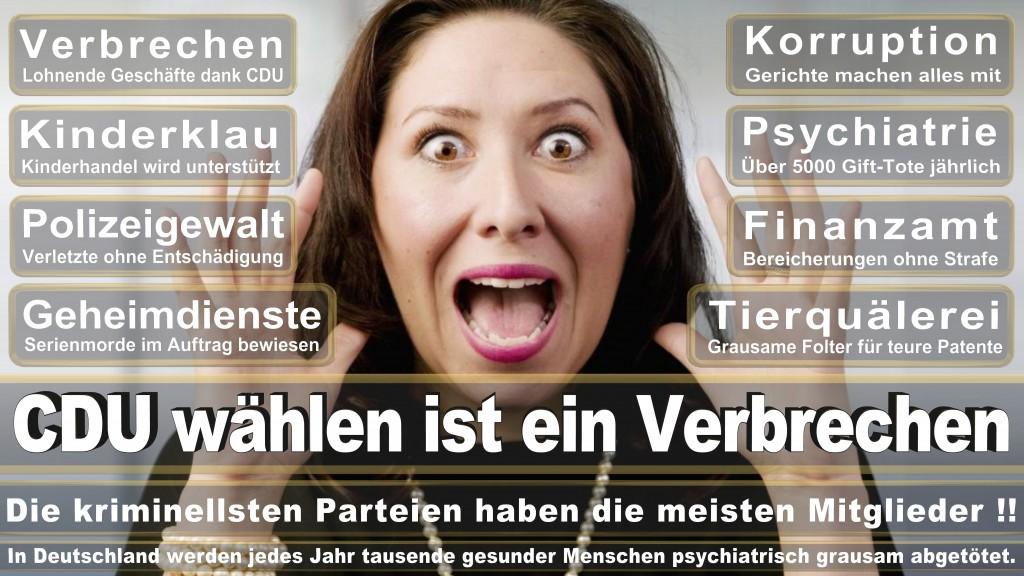 Landtagswahl-Mecklenburg-Vorpommern 2016 (382)