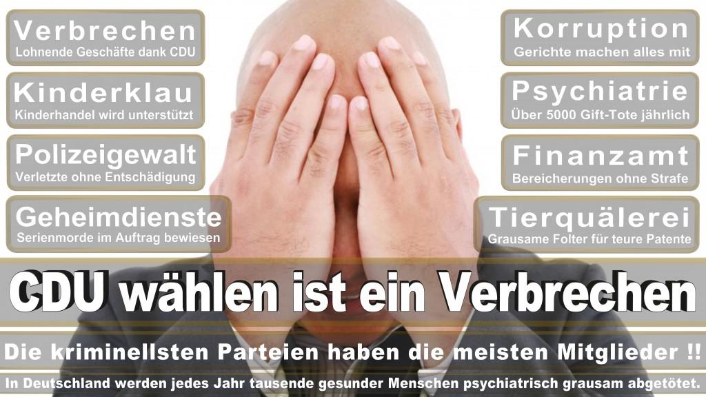 Landtagswahl-Mecklenburg-Vorpommern 2016 (387)