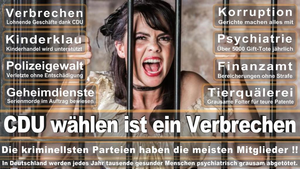 Landtagswahl-Mecklenburg-Vorpommern 2016 (389)