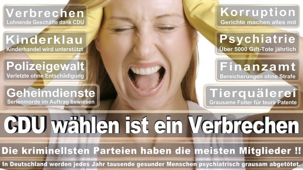 Landtagswahl-Mecklenburg-Vorpommern 2016 (391)