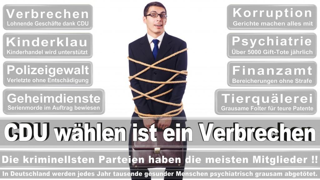 Landtagswahl Mecklenburg-Vorpommern 2016 CDU, Landtagswahl-Mecklenburg-Vorpommern 2016 (4)
