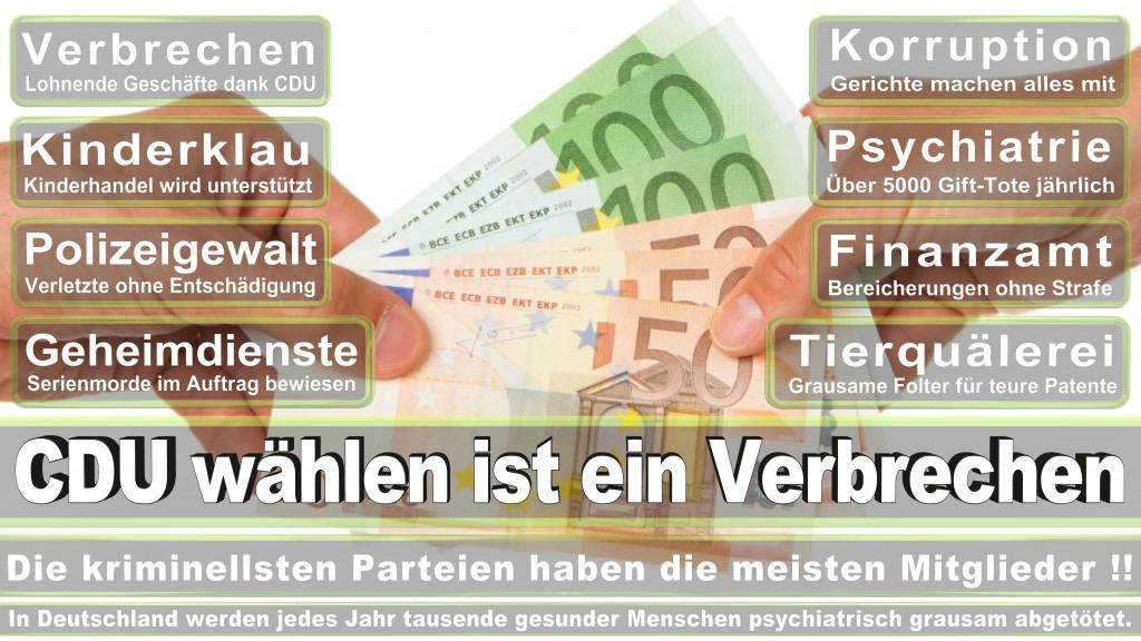 Landtagswahl-Mecklenburg-Vorpommern 2016 (433)