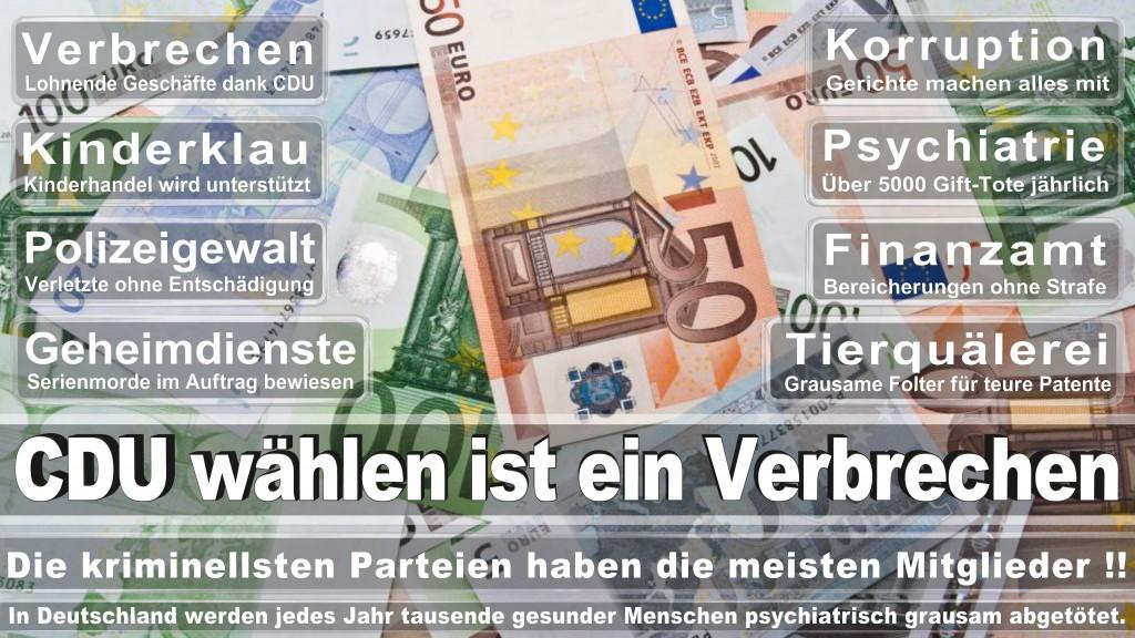 Landtagswahl-Mecklenburg-Vorpommern 2016 (435)