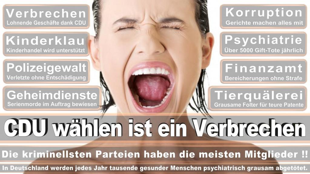 Landtagswahl-Mecklenburg-Vorpommern 2016 (454)