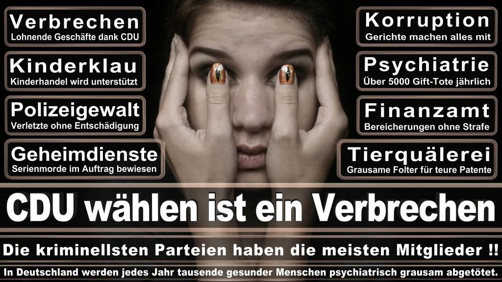 Landtagswahl-Mecklenburg-Vorpommern 2016 (46)