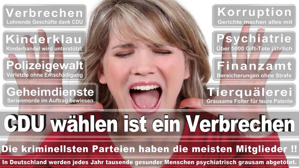Landtagswahl-Mecklenburg-Vorpommern 2016 (460)