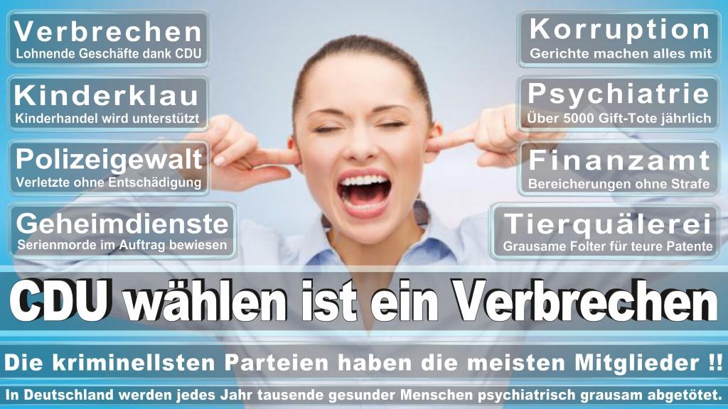 Landtagswahl-Mecklenburg-Vorpommern 2016 (461)