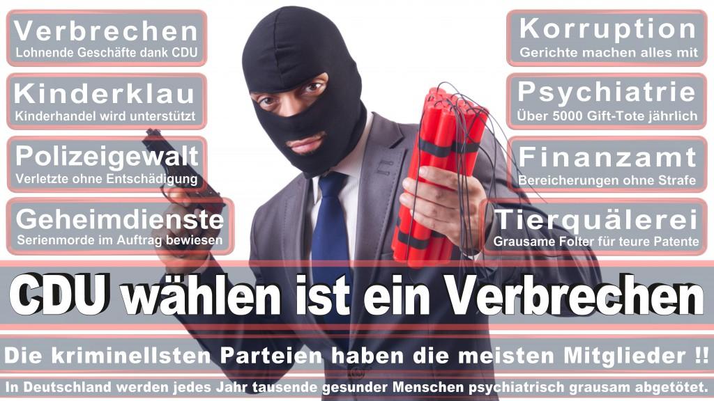 Landtagswahl-Mecklenburg-Vorpommern 2016 (47)
