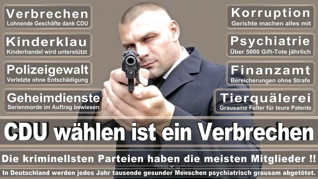 Landtagswahl-Mecklenburg-Vorpommern 2016 (483)