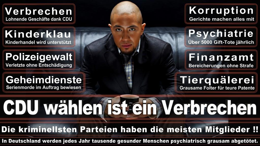 Landtagswahl-Mecklenburg-Vorpommern 2016 (50)
