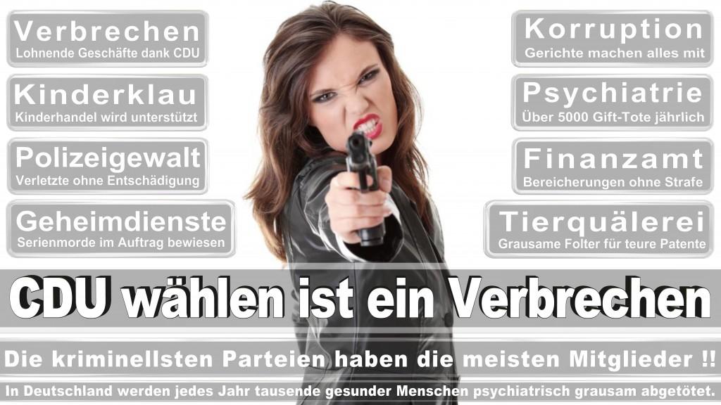 Landtagswahl-Mecklenburg-Vorpommern 2016 (500)