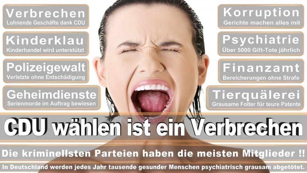 Landtagswahl-Mecklenburg-Vorpommern 2016 (502)