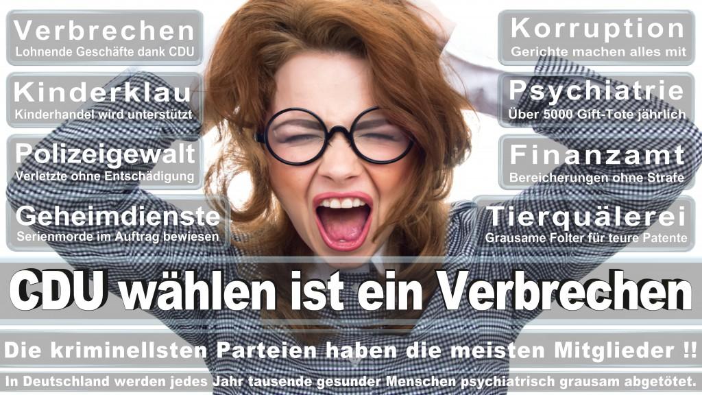 Landtagswahl-Mecklenburg-Vorpommern 2016 (504)