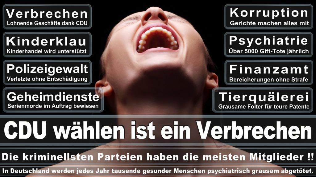Landtagswahl-Mecklenburg-Vorpommern 2016 (507)