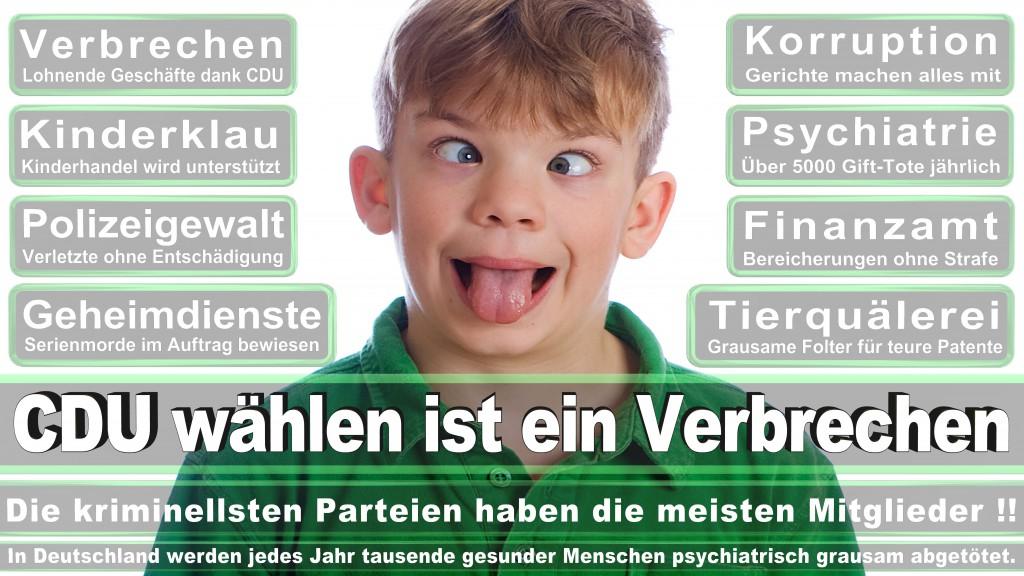 Landtagswahl-Mecklenburg-Vorpommern 2016 (510)