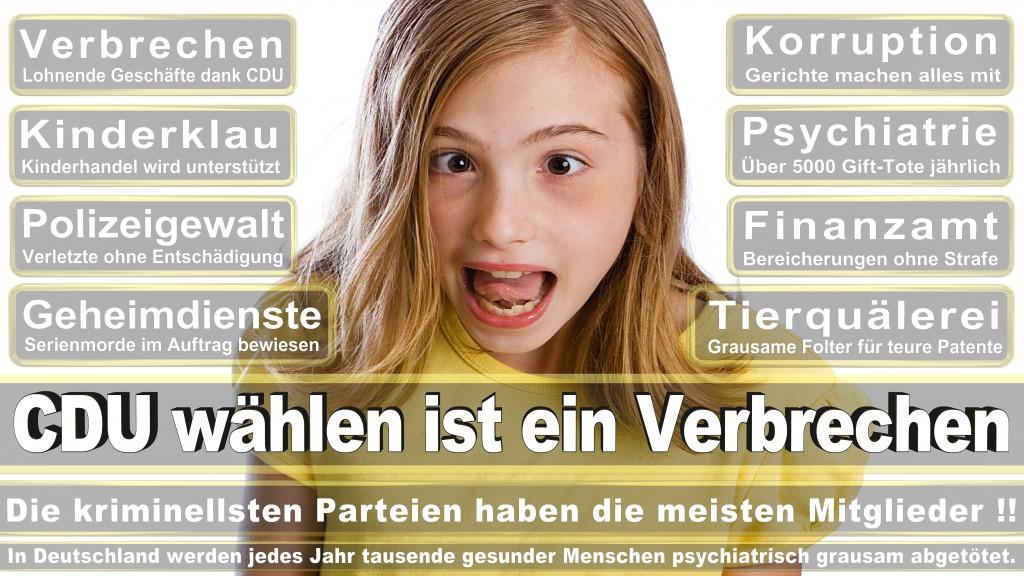 Landtagswahl-Mecklenburg-Vorpommern 2016 (511)