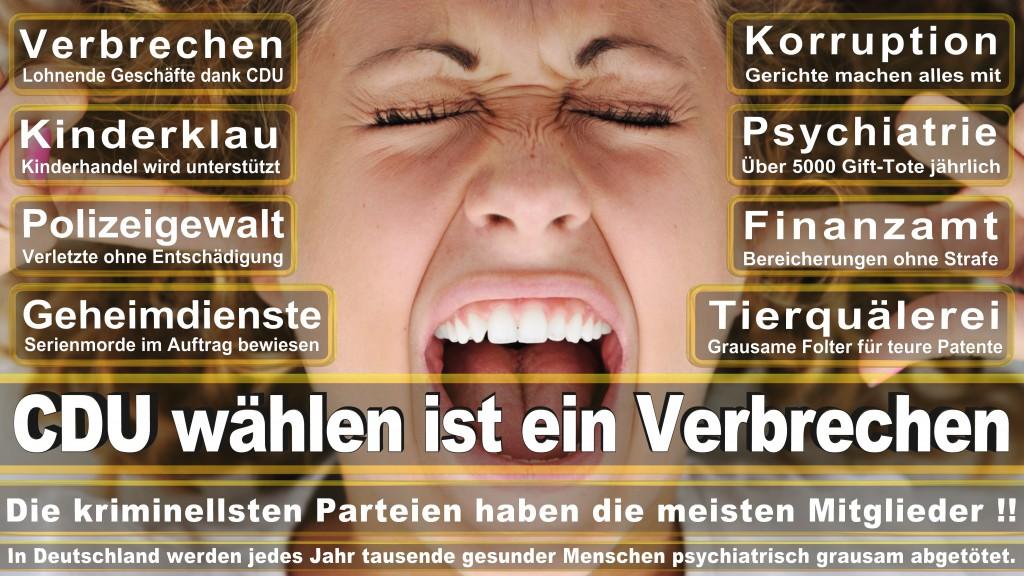 Landtagswahl-Mecklenburg-Vorpommern 2016 (512)