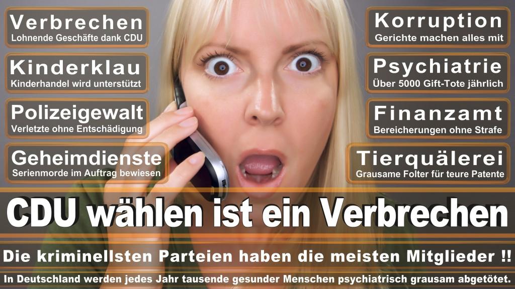 Landtagswahl-Mecklenburg-Vorpommern 2016 (513)