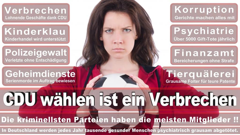 Landtagswahl-Mecklenburg-Vorpommern 2016 (517)