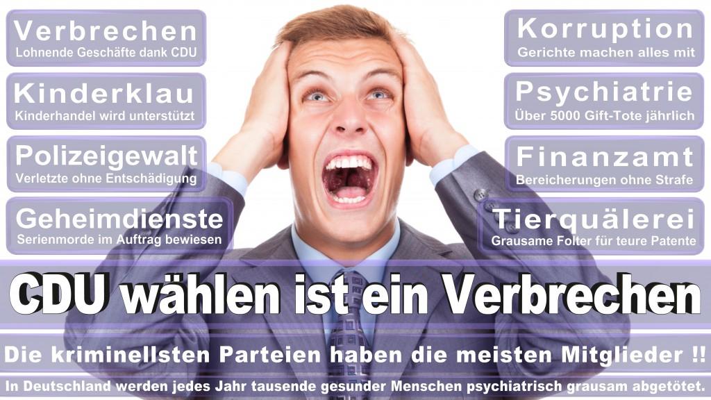 Landtagswahl-Mecklenburg-Vorpommern 2016 (520)