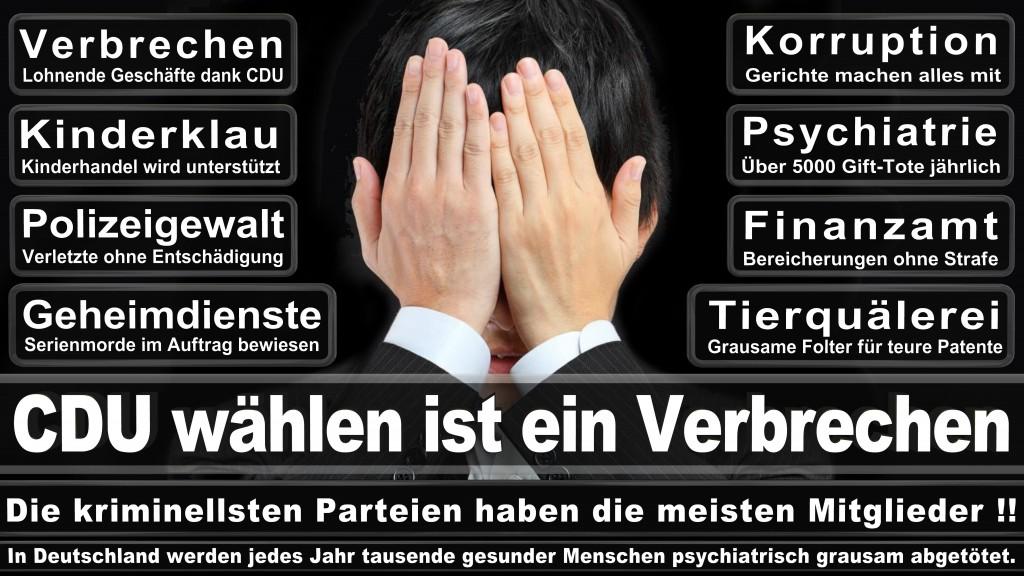 Landtagswahl-Mecklenburg-Vorpommern 2016 (524)