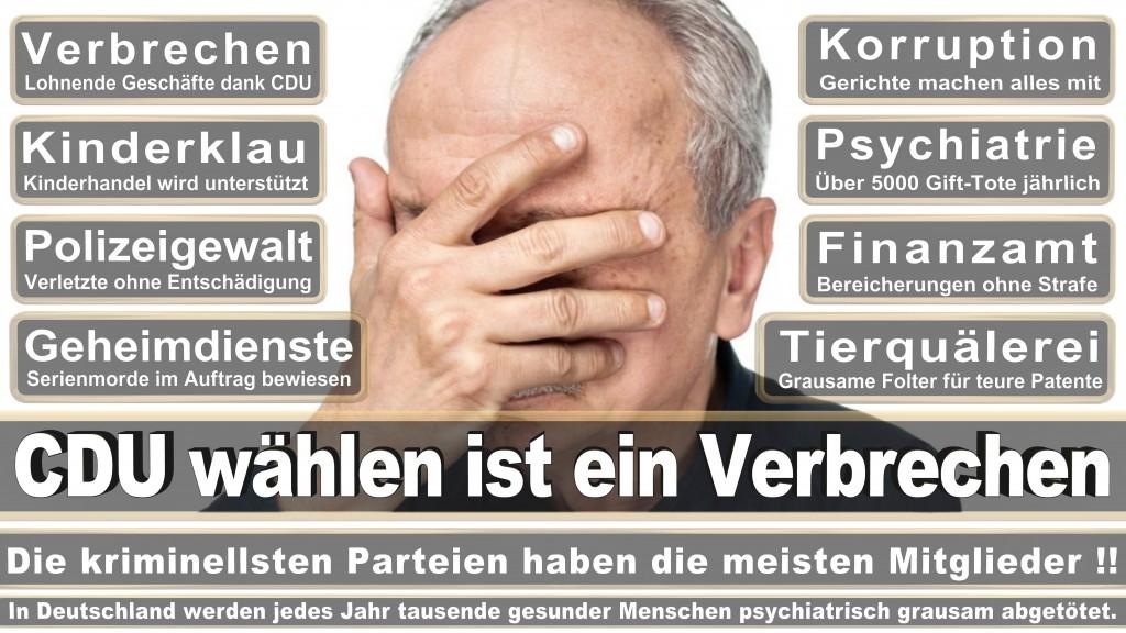 Landtagswahl-Mecklenburg-Vorpommern 2016 (525)