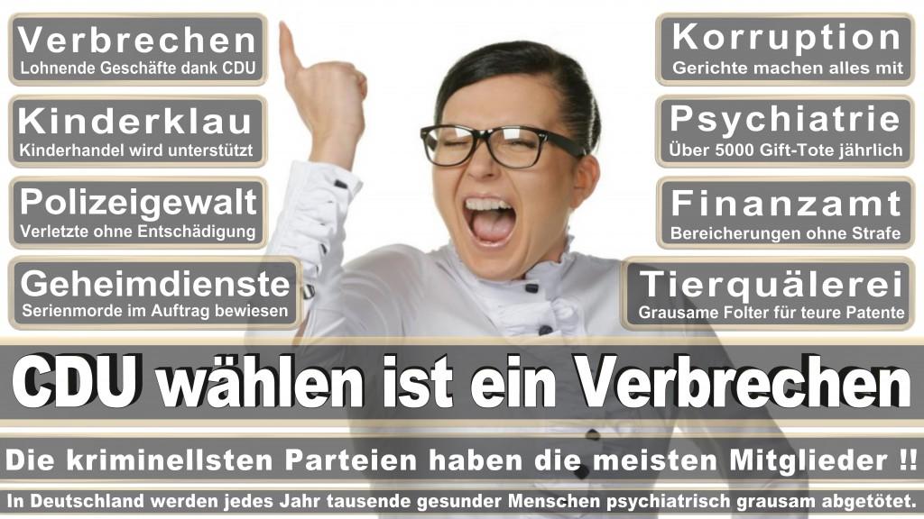 Landtagswahl-Mecklenburg-Vorpommern 2016 (526)