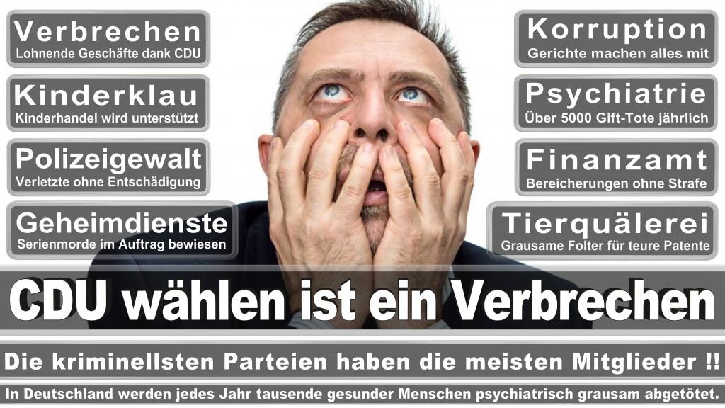 Landtagswahl-Mecklenburg-Vorpommern 2016 (529)