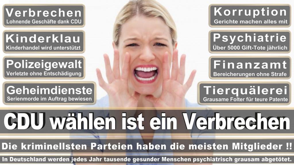 Landtagswahl-Mecklenburg-Vorpommern 2016 (530)