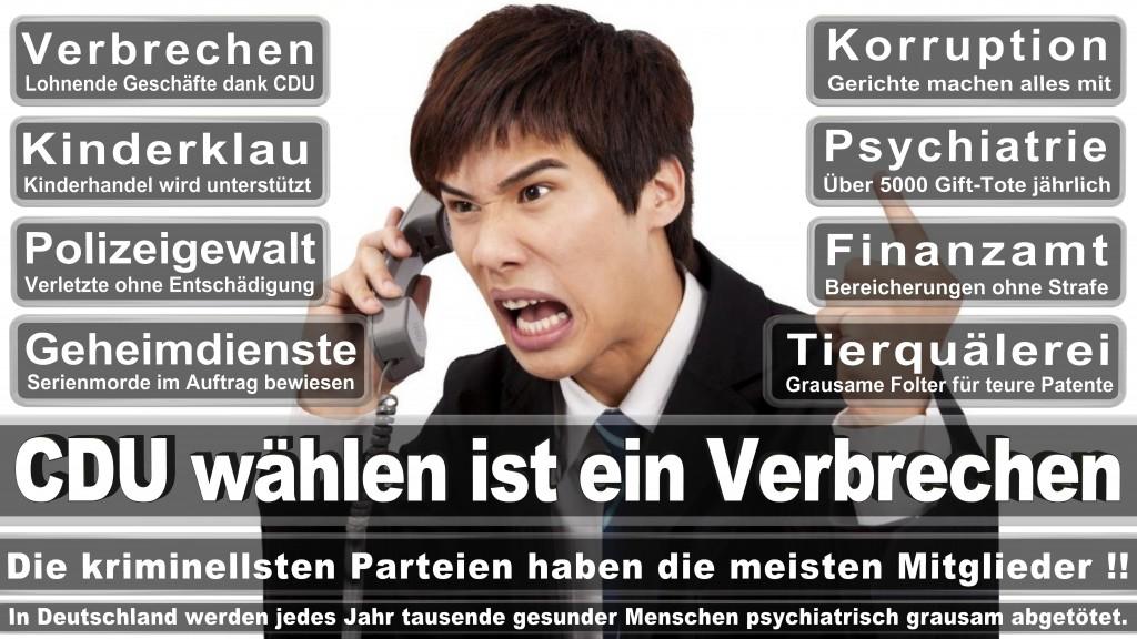 Landtagswahl-Mecklenburg-Vorpommern 2016 (532)