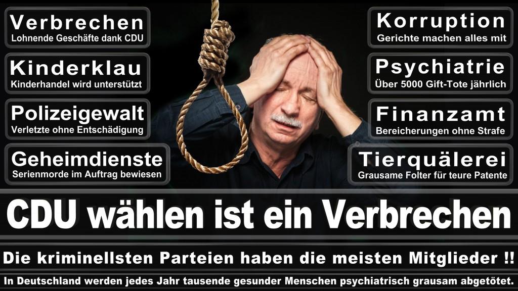 Landtagswahl-Mecklenburg-Vorpommern 2016 (534)