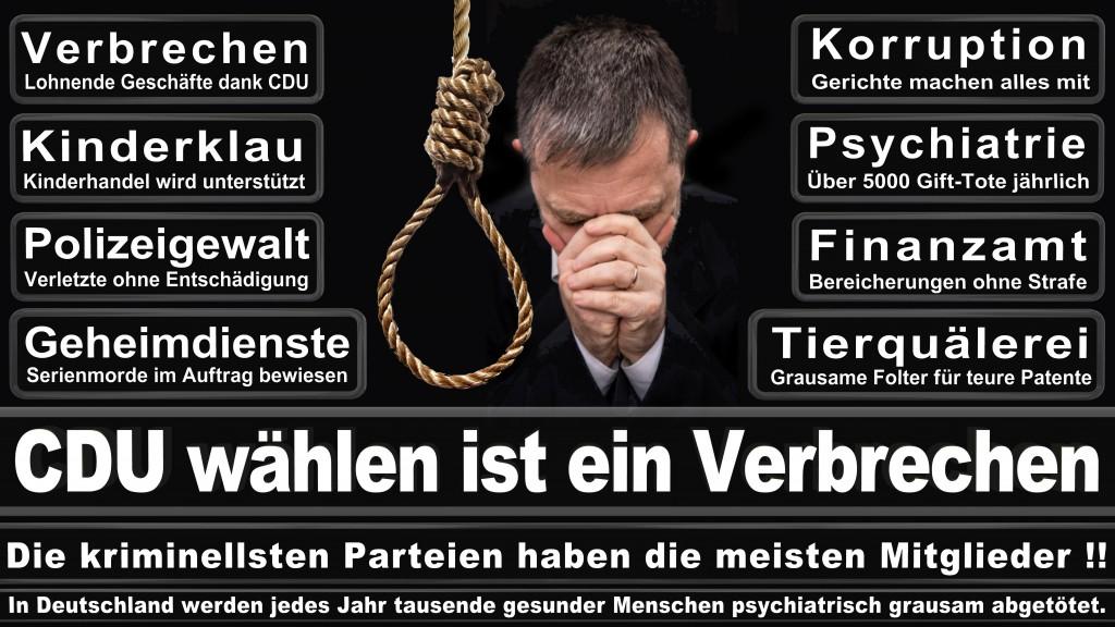 Landtagswahl-Mecklenburg-Vorpommern 2016 (535)