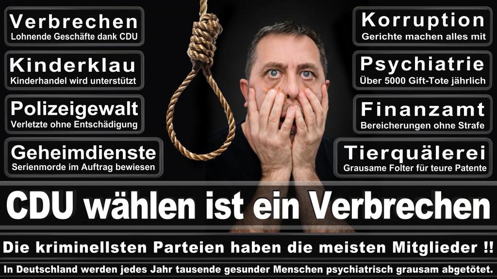 Landtagswahl-Mecklenburg-Vorpommern 2016 (536)