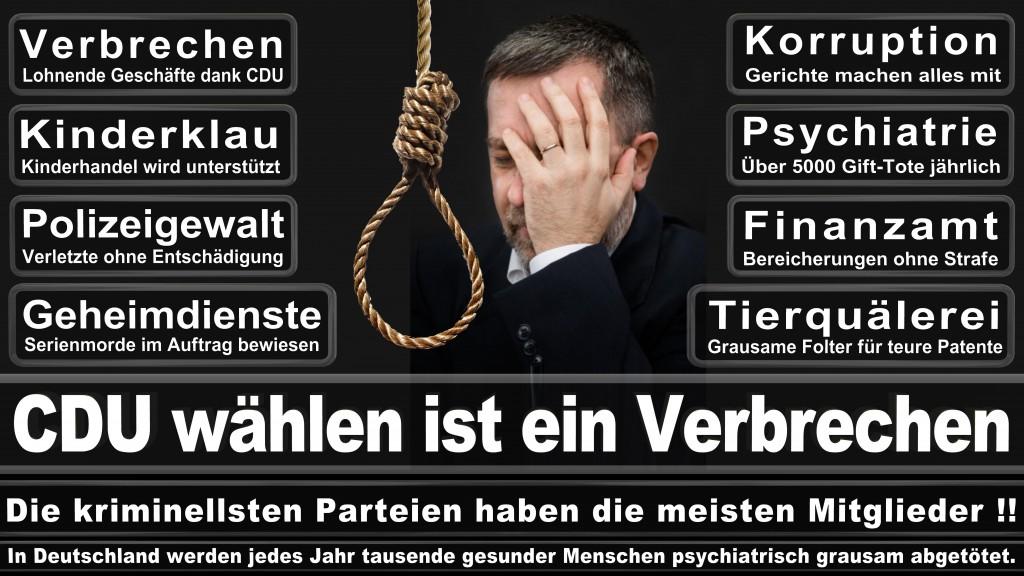 Landtagswahl-Mecklenburg-Vorpommern 2016 (537)