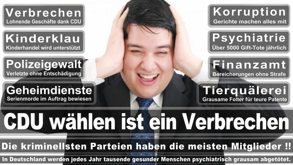 Landtagswahl-Mecklenburg-Vorpommern 2016 (538)