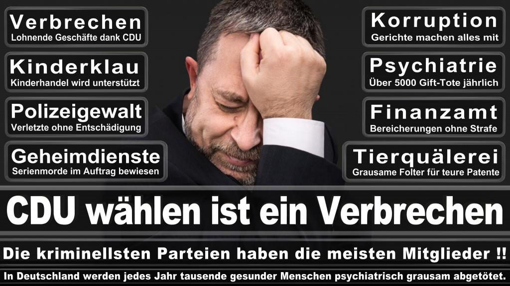 Landtagswahl-Mecklenburg-Vorpommern 2016 (541)