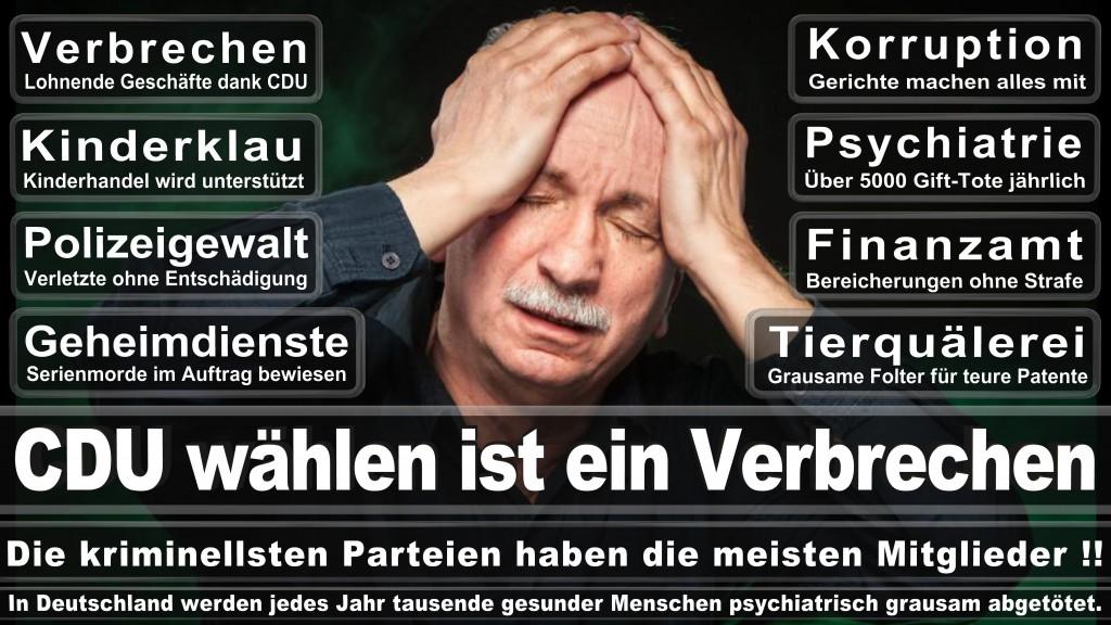 Landtagswahl-Mecklenburg-Vorpommern 2016 (542)